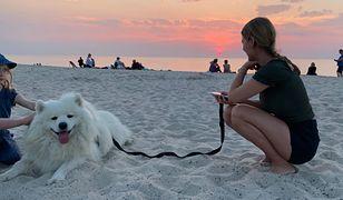 Polacy zabierają psy nad morze. Reakcje są skrajne