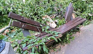 Szczątki ławki, na którą upadł złamany konar