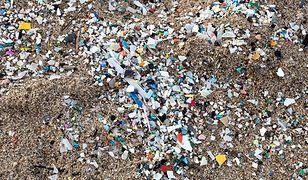 Mikroplastik staje się coraz większym problemem.