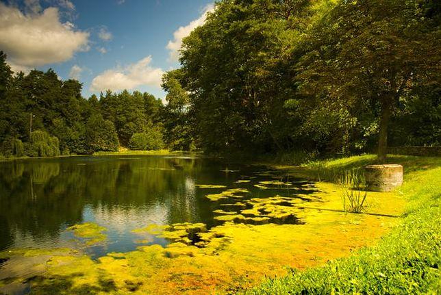 Weekend w Polsce - Roztoczański Park Narodowy