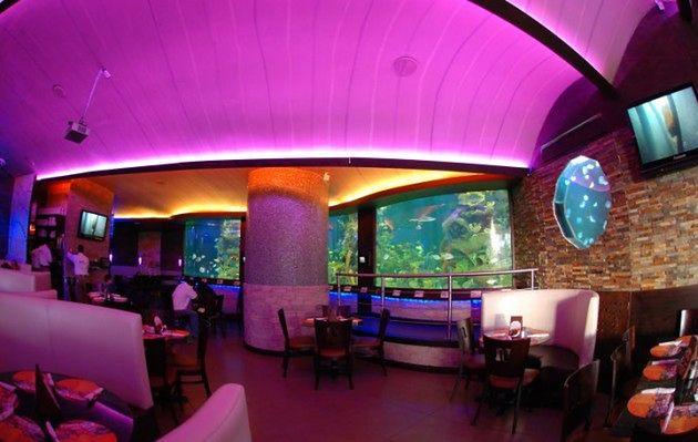 Nais Aquarium, Gwatemala
