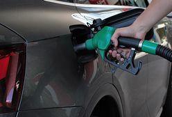 Opłata paliwowa nie wpłynie na ceny na stacjach?