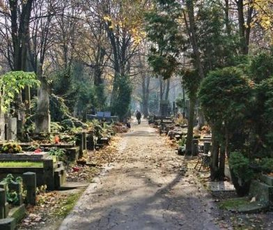 Potrzebne 1,5 mln zł na ratowanie zabytkowych grobów. Na Powązkach trwa zbiórka pieniędzy