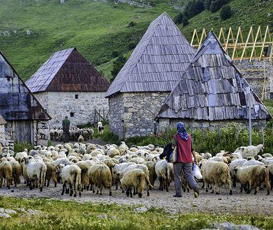 Lukomir w Bośni i Hercegowinie. Wieś na końcu świata