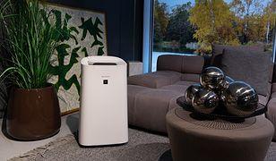 8 zalet oczyszczaczy powietrza