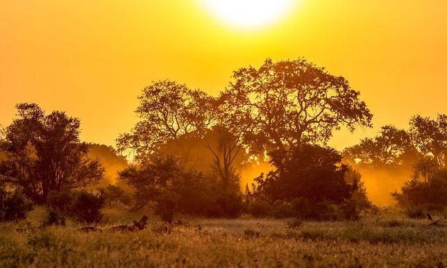 Kenijski rezerwat skrywa w sobie wiele krajobrazów.
