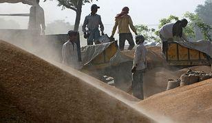 Plaga samobójstw wśród rolników w Indiach. Od stu lat państwo nie potrafi zaradzić masowym tragediom