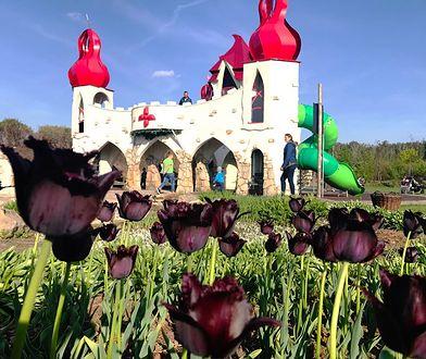 Magiczne Ogrody to nowoczesne miejsce zabaw dla dzieci