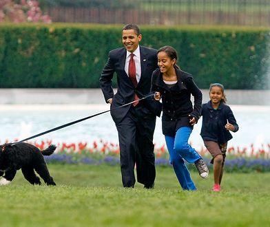Córka Obamy robi karierę. Dostała pracę marzeń