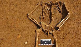 Znaleźli szkielet żołnierza spod Waterloo