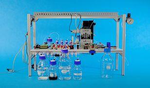 Biologiczno-elektroniczna konstrukcja, stanowiąca 5-bajtową pamięć trwałą
