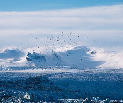 Lodowiec na Grenlandii rozpada się