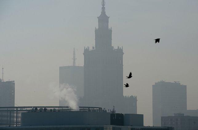 Smog Warszawa - jakość powietrza co raz lepsza, ale ze spacerów lepiej zrezygnować.