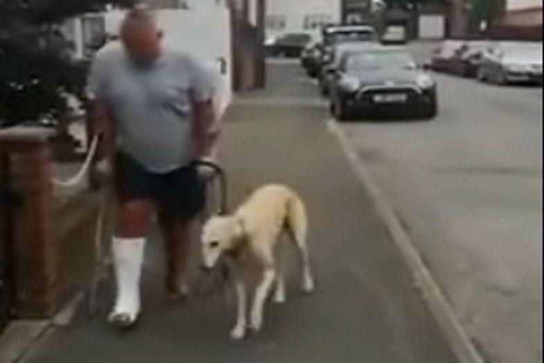 To, co zrobił ten pies, jest nie do uwierzenia. Wszystko nagrano