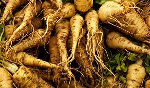 Pasternak i pietruszkę bardzo łatwo pomylić. Oba korzenie wyglądają w zasadzie tak samo. Odróżnia je tylko nać, smak i zapach.