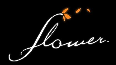 Flower - recenzja
