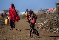 Poziom głodu na świecie rośnie. ONZ alarmuje