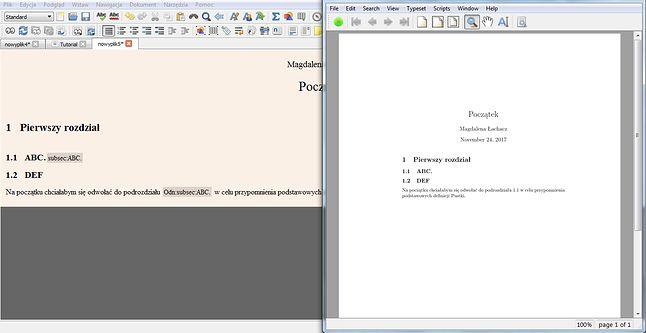 W szarym pasku widać etykietę oraz odnośnik, a obok także to, jak wyglądają w skompilowanym dokumencie.