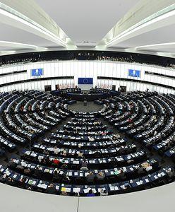 Sondaż. Wybory do europarlamentu. Koalicja Europejska na prowadzeniu