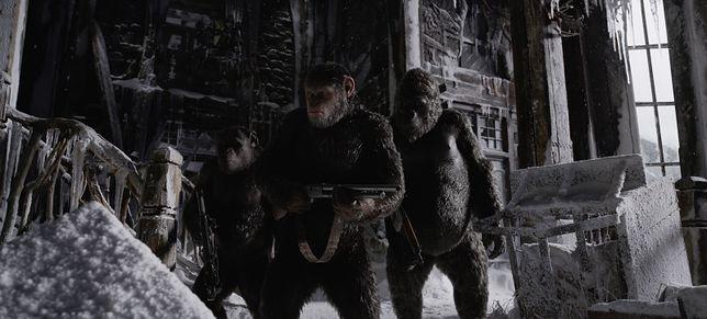 ''Wojna o planetę małp'': zobacz pierwszy zwiastun [WIDEO]