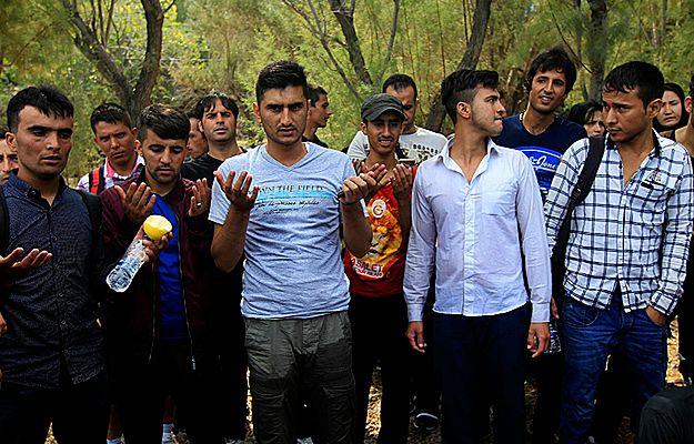 Imigranci z Afganistanu, którzy dotarli na wyspę Lesbos