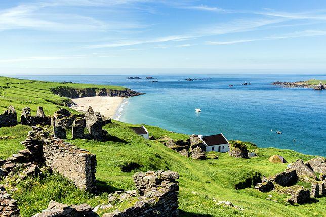 Praca na bezludnej wyspie w Irlandii. Przygoda życia czeka