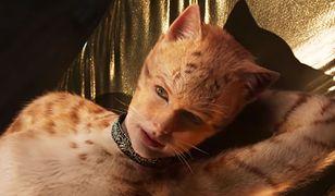 """Złote Maliny 2020. """"Koty"""" i """"Rambo: Ostatnia krew"""" mają szansę zostać najgorszymi filmami roku"""