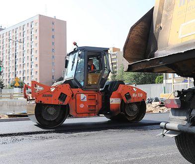 Warszawa. Naukowcy ustalili, do jakiego zwierzęcia należały znalezione na budowie metra kości