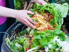 Dają drugie życie żywności. Uprawa warzyw na dachu centrum handlowego