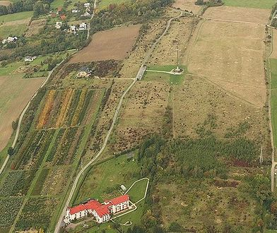 Widok ze wzgórza Trzy Lipki w Bielsku-Białej przyciąga mieszkańców miasta oraz turystów