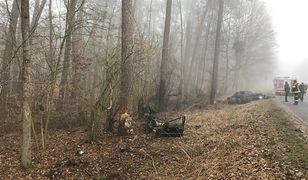 Wypadek w Wielkopolsce. Kierowca uderzył w drzewo