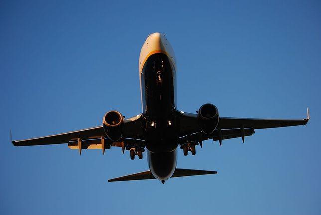 Ogromne straty Ryanaira. Czy przewoźnik wytoczy proces?