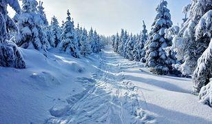 Prognoza pogody zima 2021. Czy w tym roku będzie mroźnie?