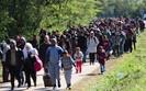 Uchodźcy w Niemczech wykorzystywani jako nielegalna siła robocza
