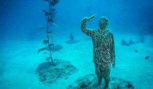 Australia. Powstaje niezwykłe podwodne muzeum