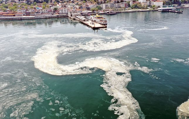 Zanieczyszczona linia brzegowa w Stambule