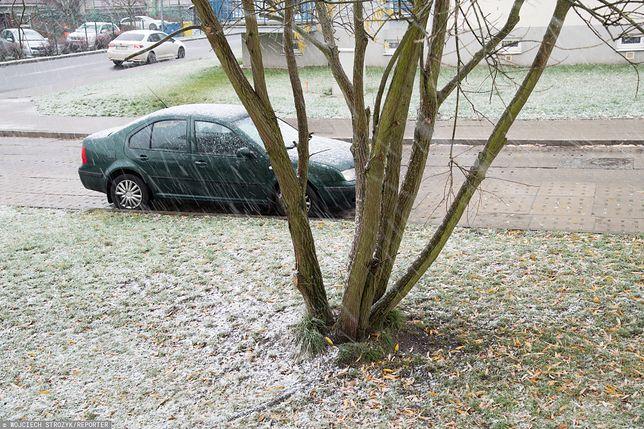 Pierwszy śnieg spadł już m.in. w Gdańsku