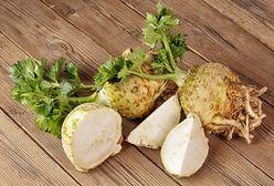 Seler korzeniowy warto mieć w kuchni. To źródło wapnia, fosforu i witaminy B6