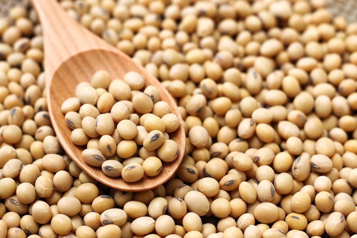 Soja – wartościowy składnik diety. Czy mężczyźni powinni jeść soję?
