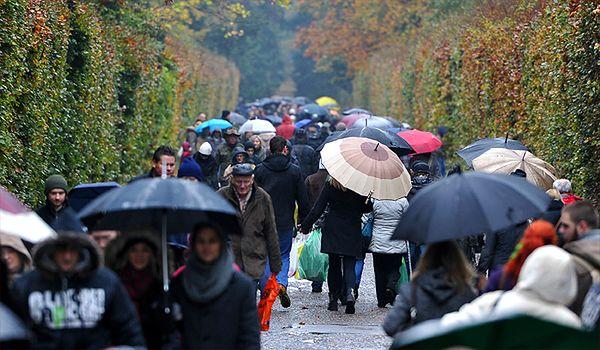Wolontariusze będą kwestować na cmentarzach w Krakowie
