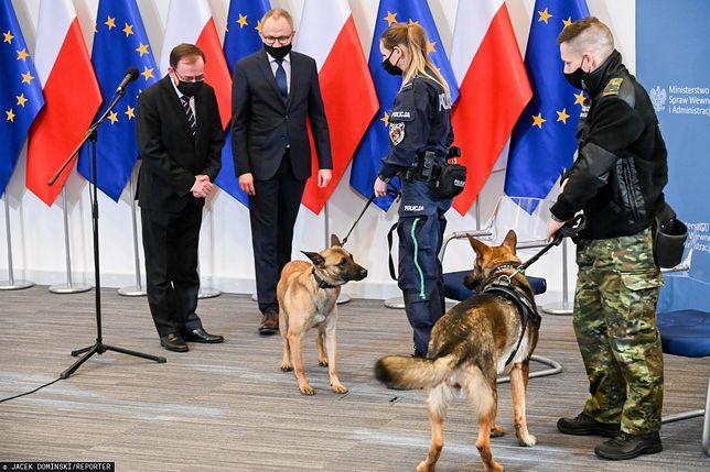 Opieka dla zwierząt w służbie. Projekt MSWiA zaakceptował Jarosław Kaczyński