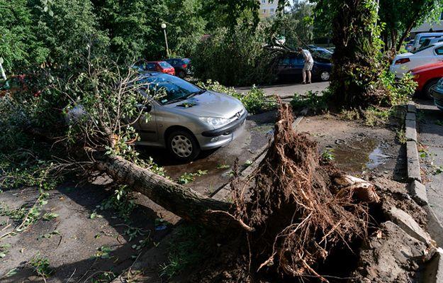 Szefowa MSW: będą zapomogi dla poszkodowanych w wyniku burz