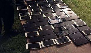 Mistrz w swoim fachu. Kieszonkowiec przyłapany na kradzieży 100 telefonów podczas jednego dnia festiwalu muzycznego