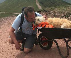 Ostatni w życiu spacer umierającego psa. Ludzie na szlaku płakali