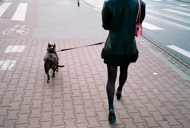 Pies pogryzł niespełna 6-letnią Oliwkę. Ma na głowie 28 szwów