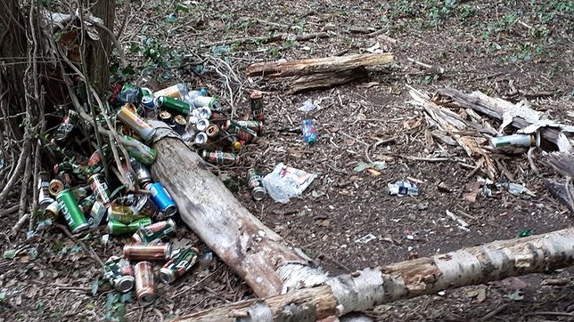Tak bałagan w lesie w pobliżu Waalwijk w Holandii zostawili nasi rodacy