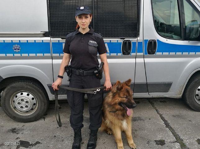 Polscy internauci pod wrażeniem Borysa. Pies odnalazł zaginioną kobietę