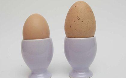 Wielki kant z wiejskimi jajami!