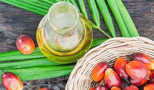 Olej palmowy: fakty i mity. Czy jest tak szkodliwy, jak się wydaje?