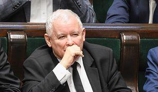 Partia Jarosława Kaczyńskiego utrzymuje wysoką pozycję w sondażach